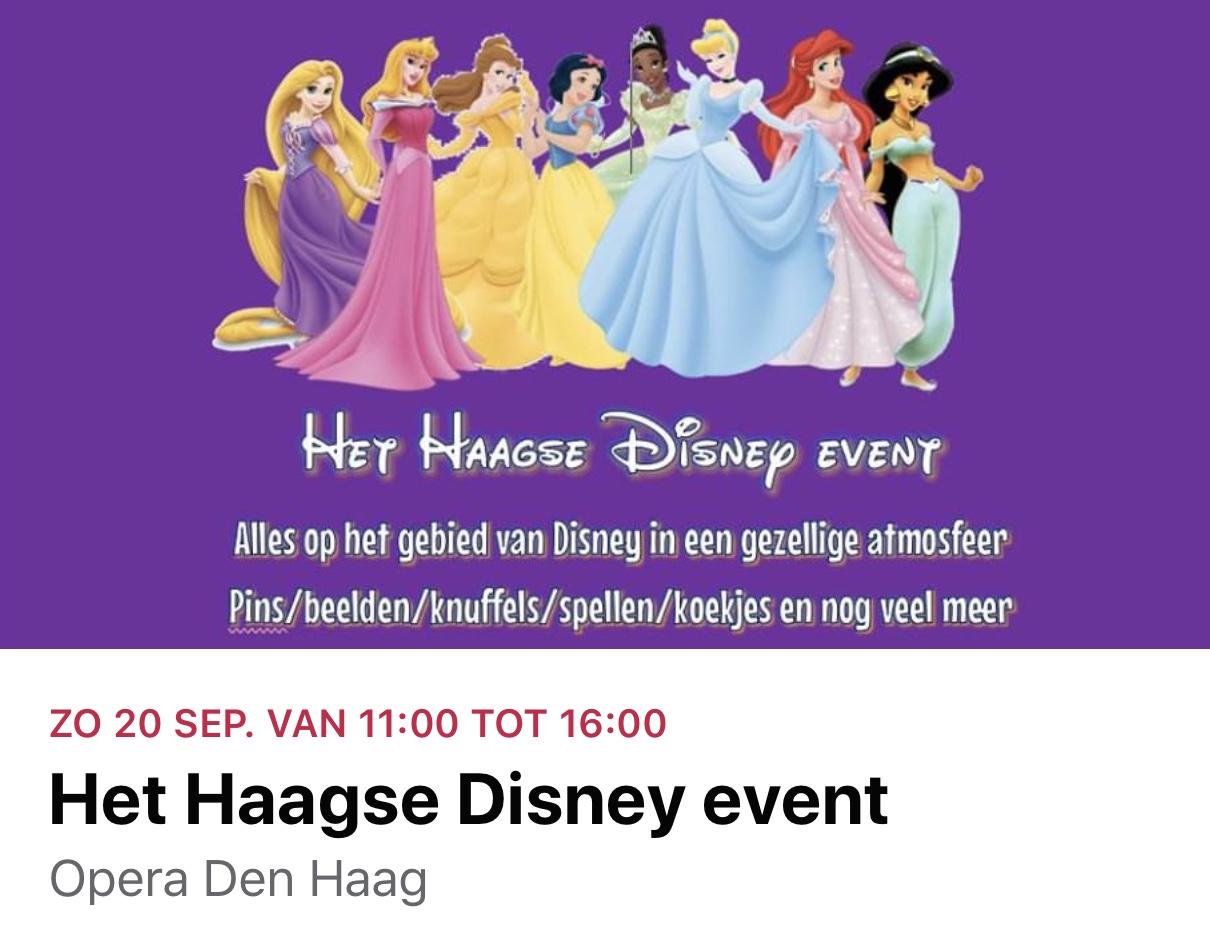 het Haagse Disney Event / Markt